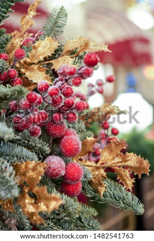 Decorative branches with berries. Christmas tree decorations and decorations in the design.