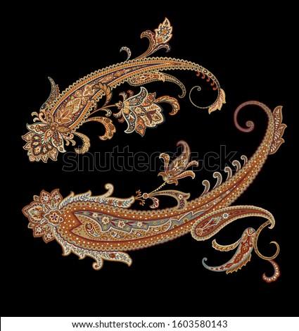 Decorative elegant luxury design.Paisley pattern.