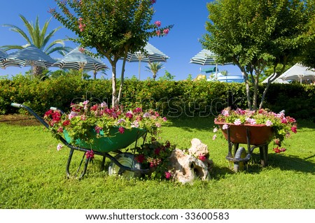decorative flower garden with carts at the resort