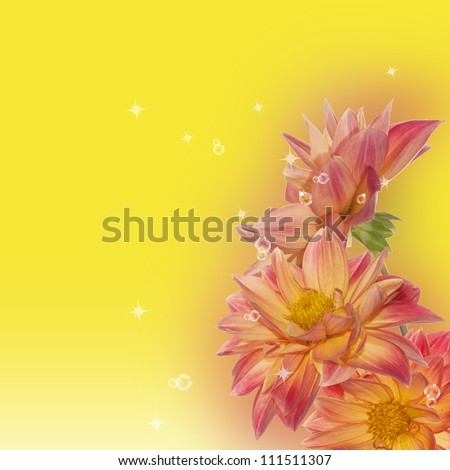 Decorative flowers border