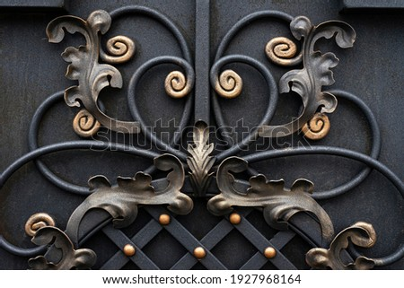Decorative forged elements, forged abstract leaves on a metal gate Stock fotó ©