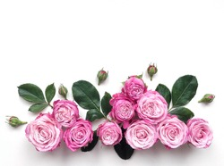 Decorative frame with pink bright roses on white background. Flat lay