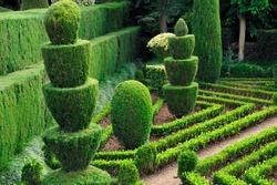 Decorative green park - Botanical garden Funchal, Madeira