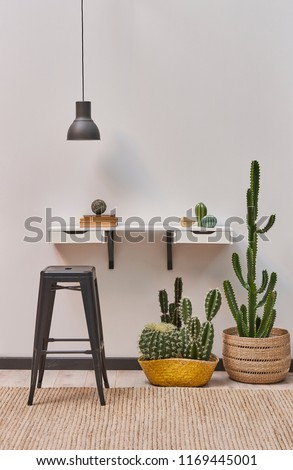 decorative home and room style white wall shelf and black lamp. metal pub chair and cactus flower decoration. #1169445001