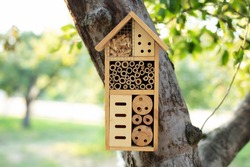 Decorative Insect house with compartments and natural components in a summer garden. Wooden insect house decorative bug hotel, ladybird and bee home for butterfly hibernation and ecological gardening.