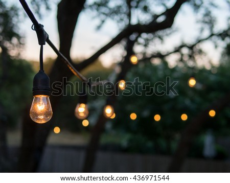 Decorative outdoor string lights hanging on tree in the garden at night time #436971544