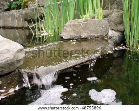 Decorative Pond With A Miniature Waterfall Stock Photo 48755896 Shutterstock