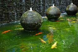 Decorative pond with fountain and gold fish.