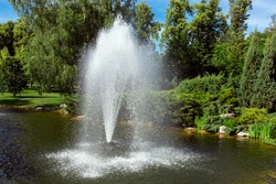 decorative pond with fountain spraying water against the background of plants and tree.