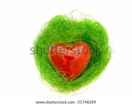 decorative red heart in green nest against the white background