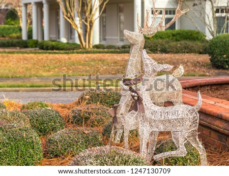Decorative Reindeer:  Decorative reindeer on display outdoors in a residential area. #1247130709