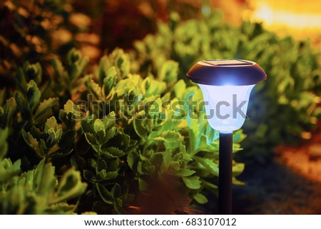 Decorative Small Garden Light, Lanterns In Flower Bed. Solar Powered Lamp