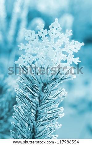 Decorative snowflake on top of the tree Winterhoof