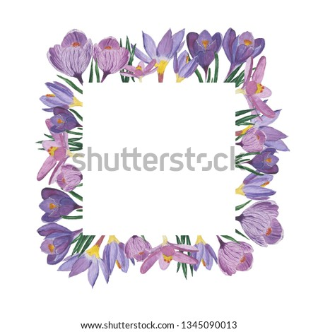 Decorative square frame with purple and pale pink crocuses, green leaves in a white background. Watercolor hand painted crocuses. Illustration #1345090013
