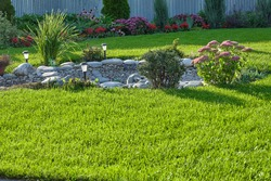 Decorative stones and pebble gravel in landscaping. Lush green lawn and shrubbery in the backyard.