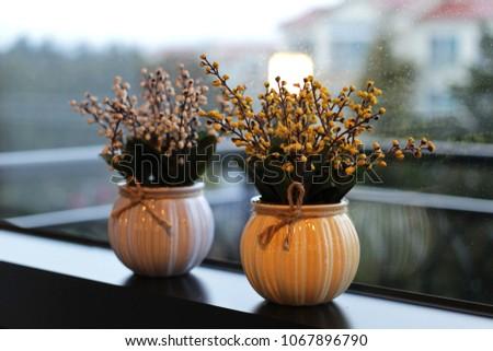 Decorative urns with decorative plants #1067896790