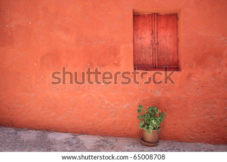 Decorative vintage window with colorful plants in pots.