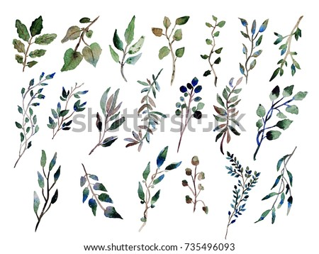 Decorative watercolor leaves clipart, design elements. Can be used for wedding, baby shower, mothers day, valentines day cards, invitations. Painted floral branches