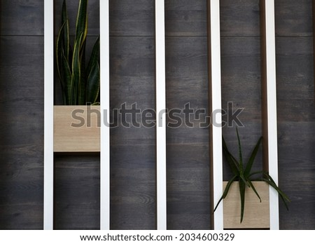 Decorative wooden wall with flower pots. Background. High quality photo Stock foto ©