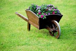 decorative wooden wheelbarrow with flowers in green grass