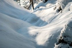 Deep and fresh powder snow in a winter forest. Perfect conditions for freestyle, backcountry and cross country skiing.