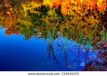 Deep blue and calm lake reflecting the fall colors of the autumn trees