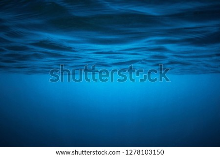 Deep Blue at the surface Stock fotó ©
