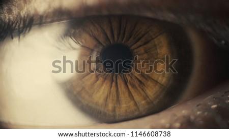 Deep brown eye #1146608738