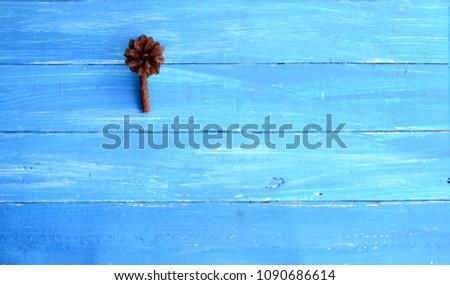 deep brown pine fruit  on light blue wooden table #1090686614