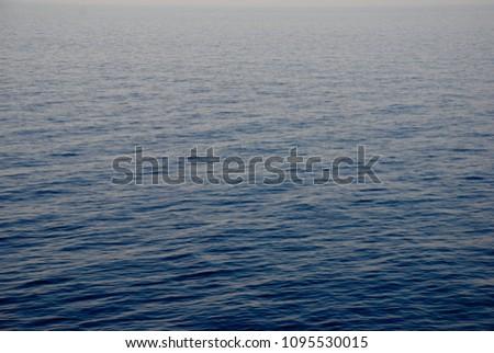 deep deep blue #1095530015