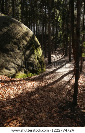 Deep forest boulder #1222794724