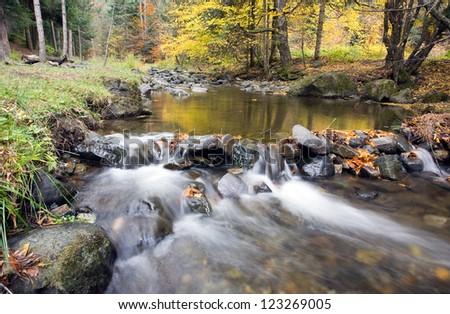 Deep forest Waterfall Autumn