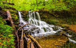 Deep forest waterfall stream view. Forest waterfall creek. Waterfall in deep forest. Waterfall river forest scene