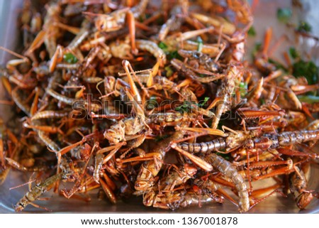 Deep fried locusts on a market in Thailand, Southeast Asia, Asia