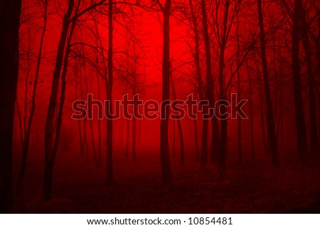 Deep Red Woods