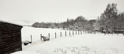 Deep snow after daylong snowfall on moorland smallholding in Nidderdale with view across sheep and goat paddock
