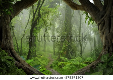 Deep Tropical