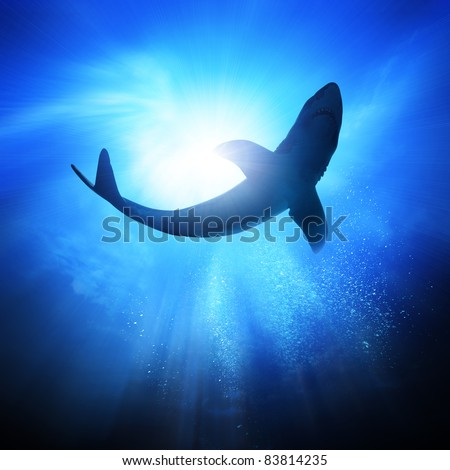 Deep under the ocean, looking up towards a shark.