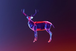 Deer, Abstract Colorful 3D Deer, triangulated design,low poly Design
