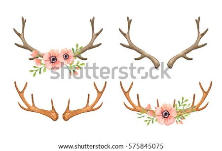 Deer Antler Watercolor Clip art, woodland, animal, stag, boho, bouquet, clip art, horn, Hand drawn, illustration, spring