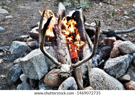 Deer Antlers Skull and a Campfire #1469072735
