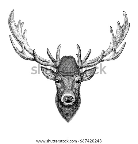 deer wild animal wearing tirol...