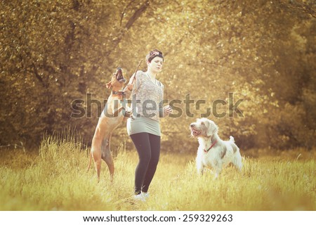 deerhound  and pointer dog  a woman in walking in autumn nature background