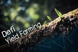 Defi Yield Farming to growing up