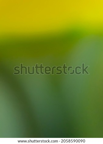 Defocused abstract background of color object edited blur