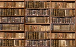 Defocused and blurred image of old antique library books on shelves for use in video conferencing background