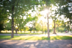 defocused bokeh background of garden with blossoming trees in sunny day, backdrop, summer time