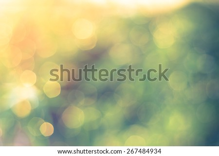 Defocused Bokeh, twinkling lights vintage blurred bokeh abstract light spring forest background. Natural bokeh from leaf tree. Blur picture style.