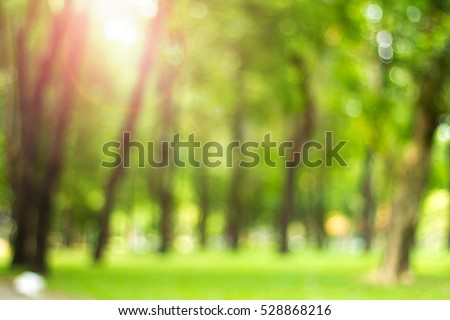 Defocused natural green tree background with sun beams. #528868216