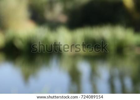 Defocused water and trees